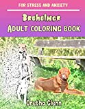 BROHOLMER Adult coloring book for stress and anxiety: BROHOLMER sketch coloring book Creativity and...